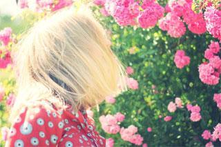 Image Credit: Pexels and lifeofpix.com