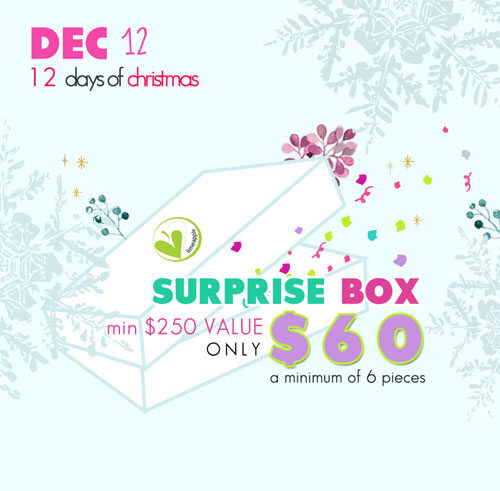 12 Days of Christmas Event at Limeapple
